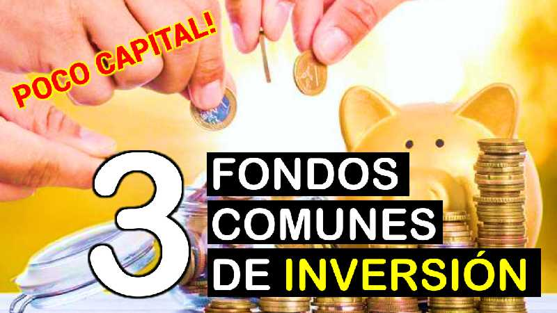 FONDOS COMUNES DE INVERSION 2021